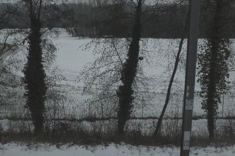 Pierre Novion - Sommeil d'hiver - 9