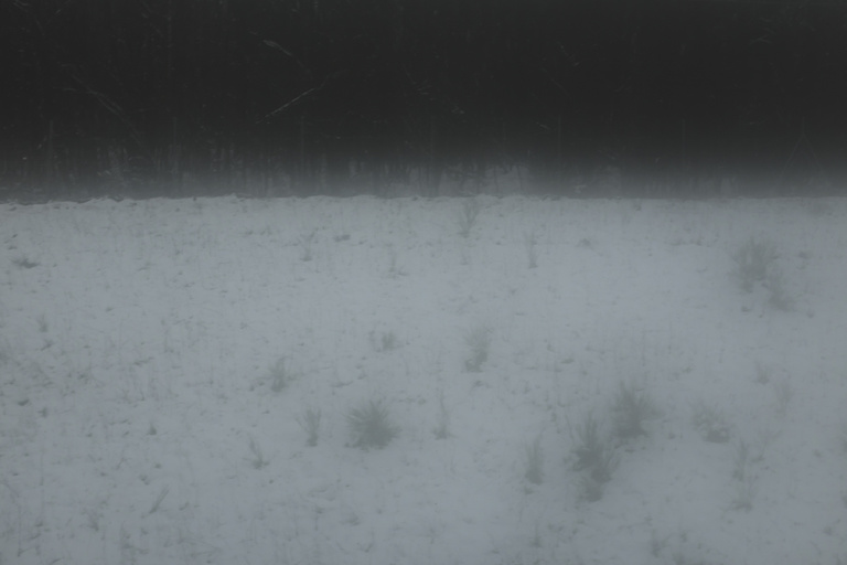 Pierre Novion - Sommeil d'hiver - 11